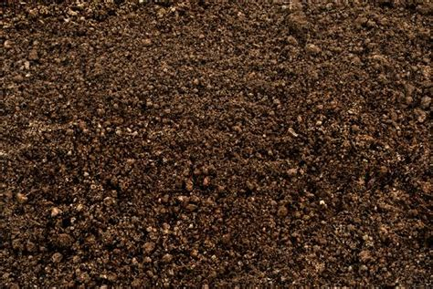 character description muck template soil structure space for life