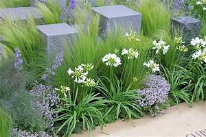 5 facons de mettre en scene les graminees detente jardin With modeles de rocailles jardin 3 rosiers paysager planter et cultiver ooreka