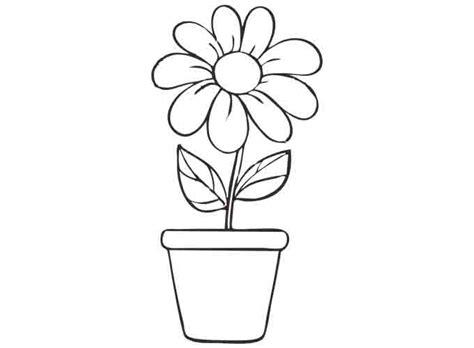 bunga matahari di dalam pot