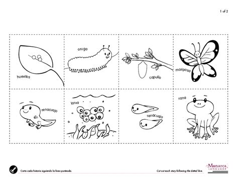 12 best images of visual processing worksheets visual 384 | animals that hatch from eggs worksheets 343991
