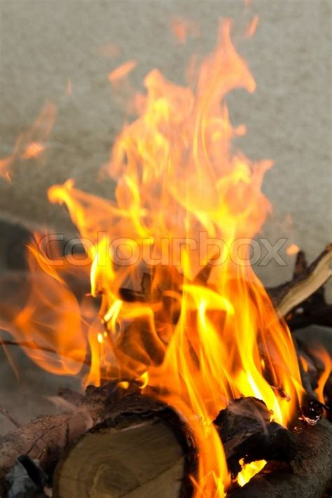 fire burning branches   tree   barbecue stock