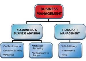 Company Organogram Structure