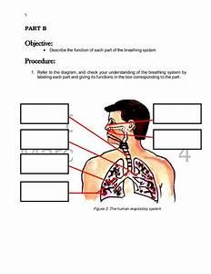 K To 12 Grade 9 Learner U2019s Material In Science