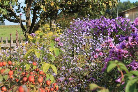 Didymos Garten Im Herbst by Belles Fleurs Garten Haus Natur Herbst Im Garten