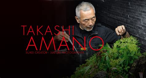 amano aquascape takashi amano creator of the nature aquarium