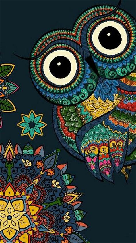 Owl Phone Wallpaper by The 25 Best Owl Wallpaper Ideas On Cool