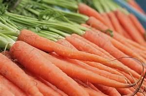 Pomodori e carote, perché mangiarli cotti - tecnologia