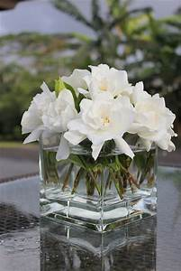 gardenias | Flowers and Bouquets! | Pinterest