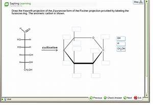 Solved: Draw The Haworth Projection Of The ?-pyranose Form ...