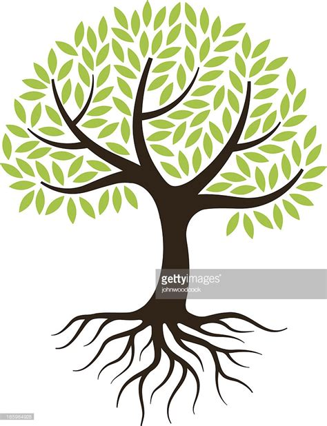 tree trunk and roots template little tree illustration with roots vector art getty images