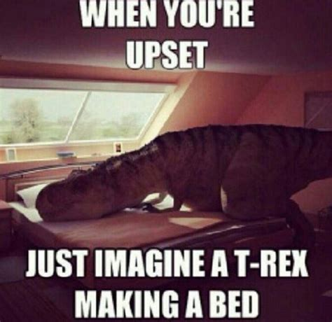 Funny Feel Better Memes - best 25 get well soon funny ideas on pinterest get well funny funny get well cards and get