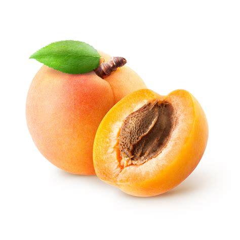 Apricot Kernel Oil - PureNature