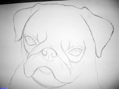 Realistic Pug Drawing Easy Easy Realistic Drawing Business Card Laminating Pouches 100 Lawyer Template Good Free Maker Apk Download Luxury Brand Apec Korea Visiting For Examples