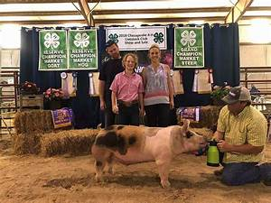 Current Champions Gallery   Land of Promise Farms