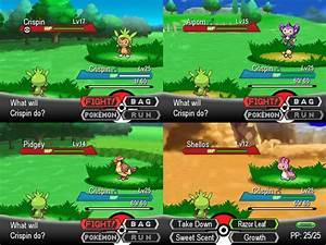 blank pokemon battle scene images