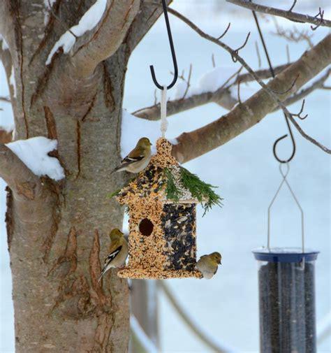 fabriquer ses meubles de cuisine soi m麥e nichoir à oiseaux maison et mangeoire à fabriquer soi même