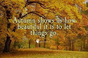 5 Reasons Why Introverts Love Autumn – Learning Mind