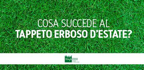 Concimazione Tappeto Erboso by Cosa Succede Al Tappeto Erboso D Estate Tempoverde
