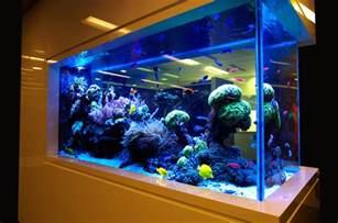 interior decoration designs for home modern aquarium designs for home that looks beautiful