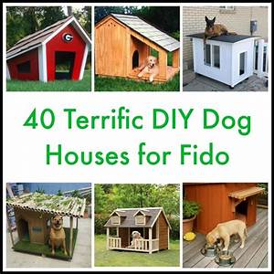 40 Terrific DIY Dog Houses for Fido