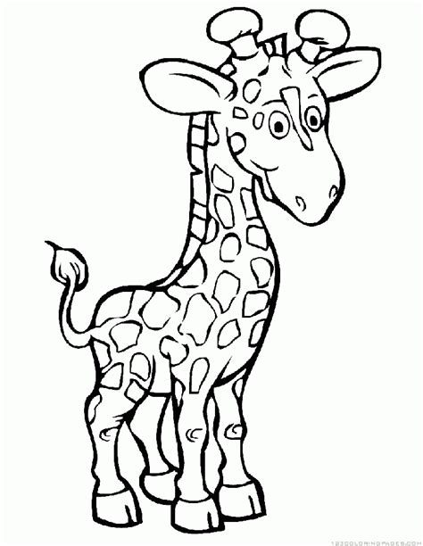 giraffe coloring pages wwwceridianindexcom