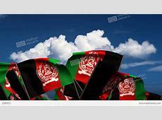 Waving Afghan Flags Stock Animation 2389551