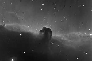 The Horsehead Nebula (Barnard 33) - Ori - The Virtual ...
