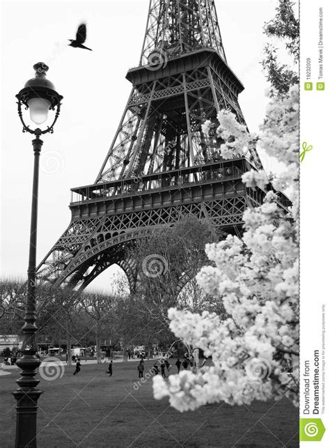 eiffel tower  spring park paris france royalty
