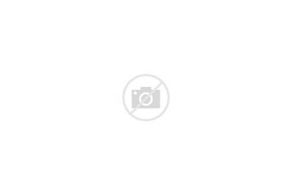 Brochure Fold Tri Brochures Folded Trifold Printing