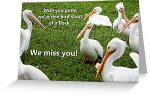 We Miss You Greeting Cards