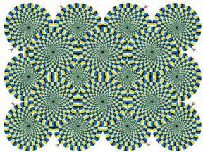 nikhil r world illusions visual phenomena