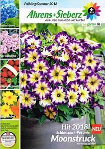 Kataloge Auf Rechnung : garten kataloge gratis haus dekoration ~ Themetempest.com Abrechnung