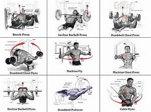 Mass Building Workout