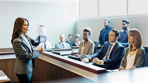 How the Trial Lawyers would Convince the Judge and the ...