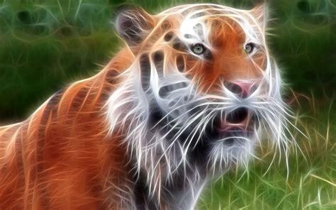 Black Tigers Best Download