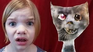 World's Ugliest Cats! Edges2Cats site | Babyteeth More ...
