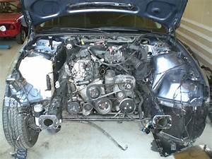 Bmw E46 Engine Compartment Screening