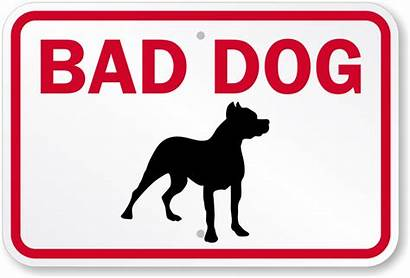 Dog Bad Sign Beware Signs Funny Mysecuritysign