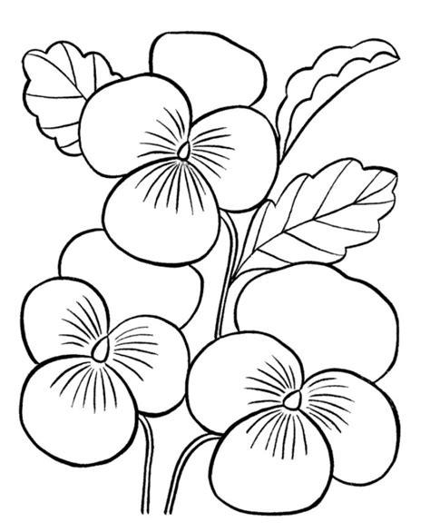 mewarnai gambar bunga cantik coloring pages