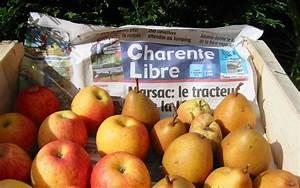 Conservation Des Poires : cueillette et conservation des pommes et des poires charente ~ Melissatoandfro.com Idées de Décoration