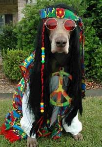 Hippie | peace and love | Pinterest
