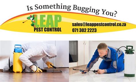 How To Get Rid Of Fishmoths In Cupboards by Leap Pest Vouchers Services Durban S Deals
