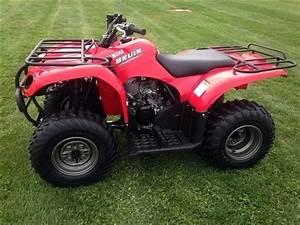 Quad Yamaha 250 : 2006 yamaha 250 quad motorcycles for sale ~ Medecine-chirurgie-esthetiques.com Avis de Voitures