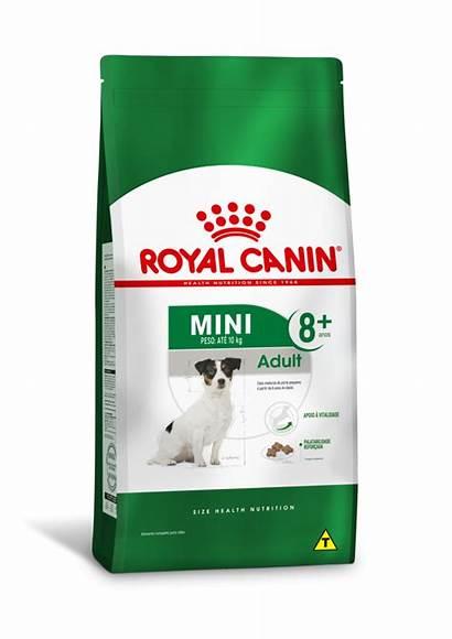 Royal Canin Adult Indoor Ageing Kg Senior