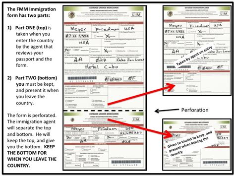 A Guide For Completing Mexican Immigration & Custom Forms