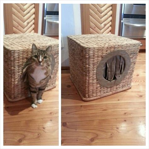 Homemade Cat House  For The Home  Pinterest  Cat Houses