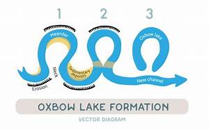 Oxbow Lake Formation  Vector Diagram  U2014 Stock Vector