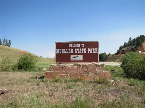 Florissant Fossil Beds by Mueller State Park Colorado Travel Blog