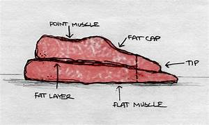 Brisket Flat And Point Diagram