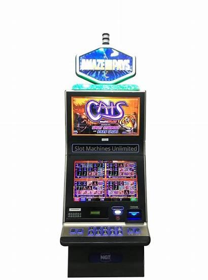 Cats Slot Machines Slots River Machine Igt